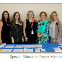 Group of parent mentors