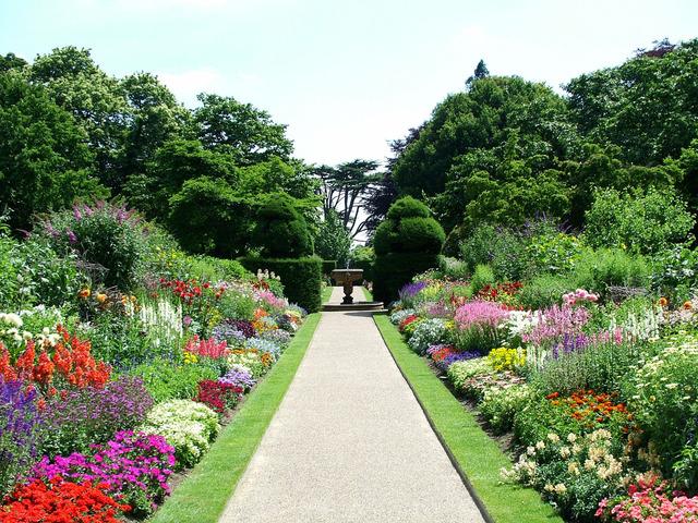 flowered-path-1547767-640x480